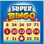 bingo-hd