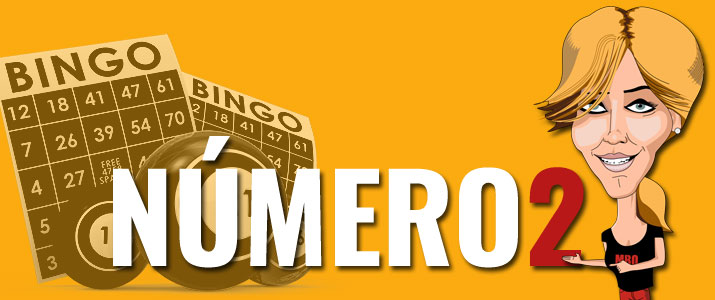 numero dos bingo